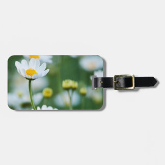 White Daisies in a Field - Customized Daisy Luggage Tag