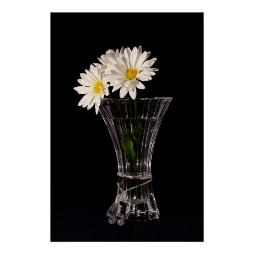 White Daisies In Vase Poster