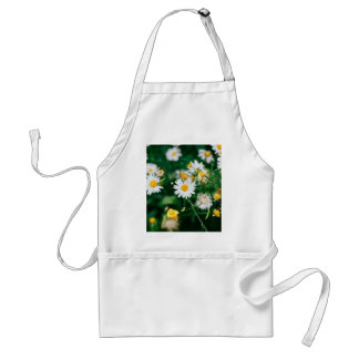 White daisies with a yellow center standard apron