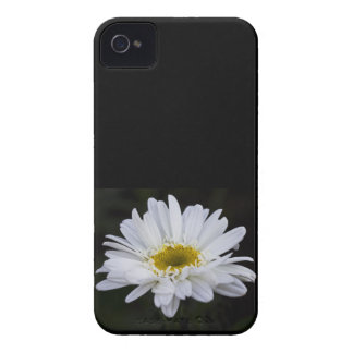 White Daisy 4/4S Case