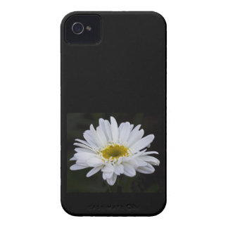 White Daisy 4/4S Case Mate Case