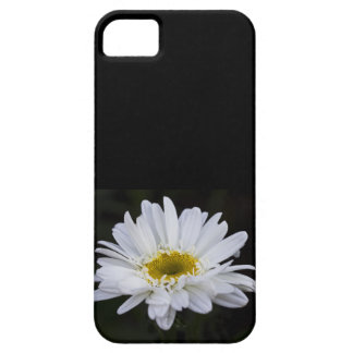 White Daisy 4 Case iPhone 5 Cases