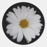 White Daisy Classic Round Sticker