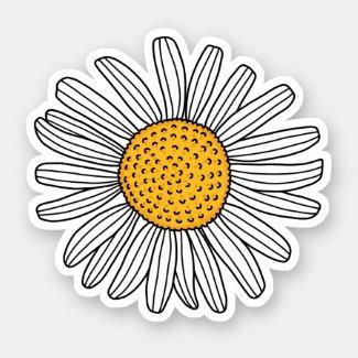 White daisy drawing