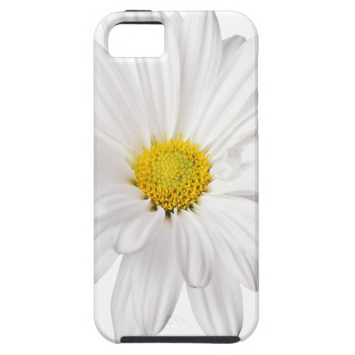 White Daisy Flower Background Customized Daisies iPhone 5 Case