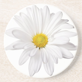 White Daisy Flower Background Customized Daisies Coaster