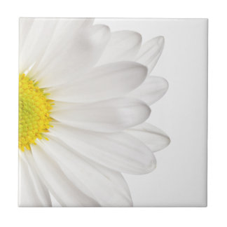 White Daisy Flower Background Customized Daisies Small Square Tile