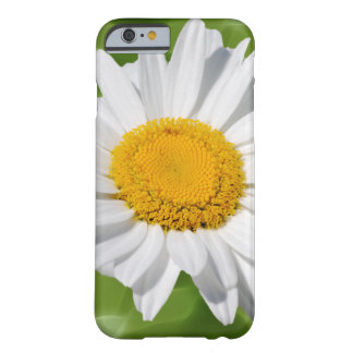 White Daisy Flower Barely There iPhone 6 Case