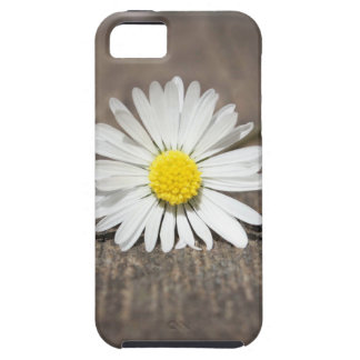 White Daisy Flower iPhone 5/5S Cover