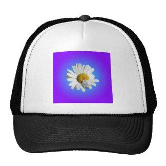 White Daisy Flower Floral Purple Blue Gradient Cap