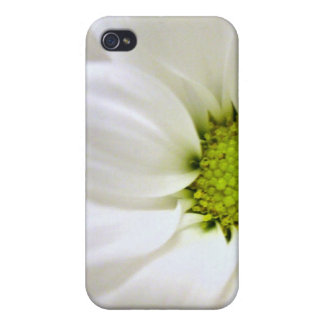white daisy flower iPhone 4/4S cover