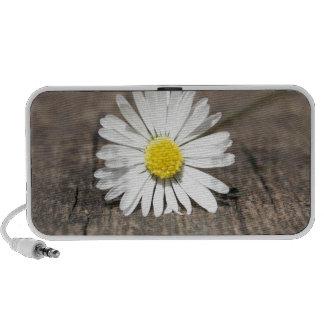 White Daisy Flower Travel Speakers