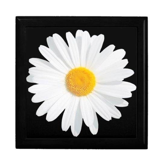 white daisy large square gift box