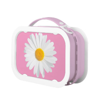 white daisy lunchbox