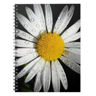 White Daisy Notebooks