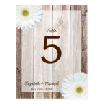 White Daisy Rustic Barn Wood Wedding Table Number Post Cards