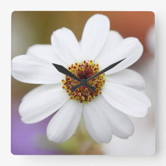 White Daisy Square Wall Clock