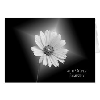 White Daisy Sympathy Card