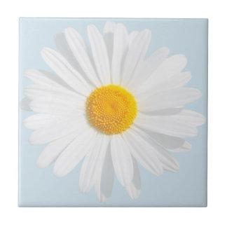 white daisy tile
