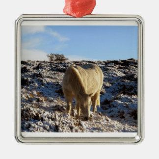 White dartmoor pony grazeing in snow christmas ornament