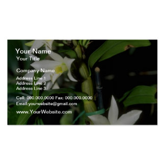 white Dendrobium flowers Business Card