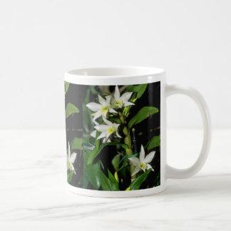 white Dendrobium flowers Coffee Mugs
