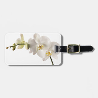 White Dendrobium Orchid Flower Spray Floral Blank Travel Bag Tag