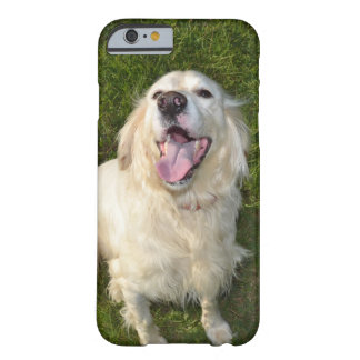 White Dog Barely There iPhone 6 Case