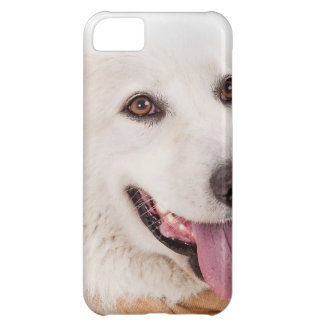 WHITE DOG HAPPY PETS FURRY FRIENDS ANIMALS TAME LO iPhone 5C CASE