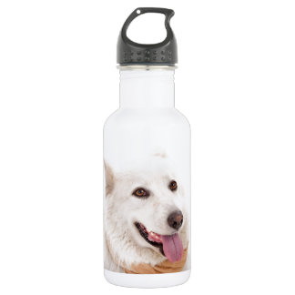 WHITE DOG HAPPY PETS FURRY FRIENDS ANIMALS TAME LO 532 ML WATER BOTTLE
