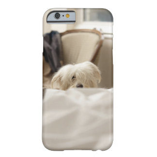 White dog hiding behind bed (differential focus) barely there iPhone 6 case