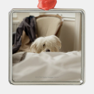 White dog hiding behind bed (differential focus) Silver-Colored square decoration