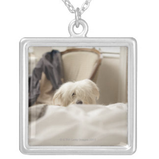 White dog hiding behind bed (differential focus) silver plated necklace