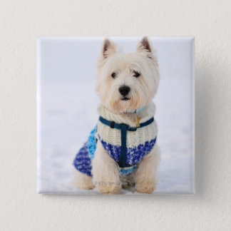 White dog in clothes in the snow. 15 cm square badge