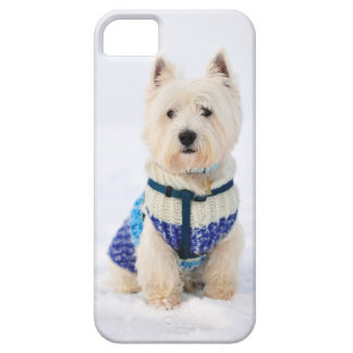 White dog in clothes in the snow. case for the iPhone 5
