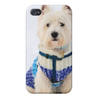 White dog in clothes in the snow. iPhone 4 cases