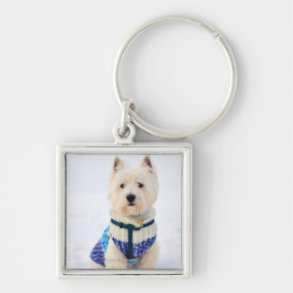 White dog in clothes in the snow. key ring