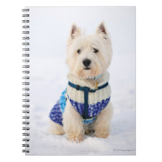 White dog in clothes in the snow. notebooks