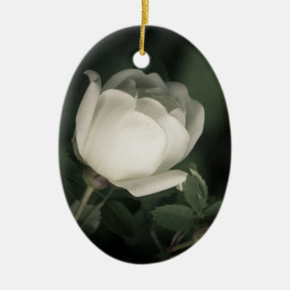 White Dogrose on a Dark Background. Add Your  Name Christmas Ornament