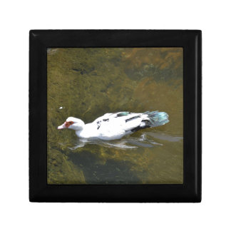 White Duck Jewelry Boxes