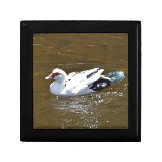 White Duck. Gift Boxes