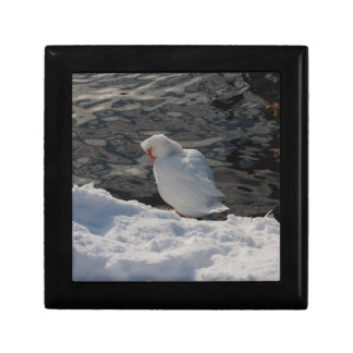white duck in the snow trinket boxes