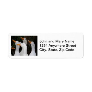 White Ducks Photo Return Address Labels