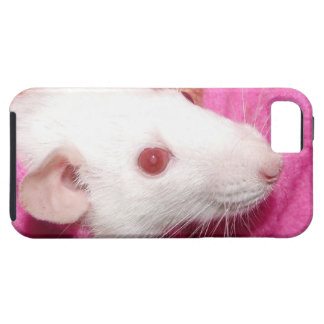 white Dumbo rat iPhone 5 case