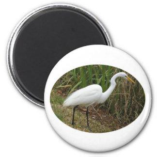 White Egret 6 Cm Round Magnet