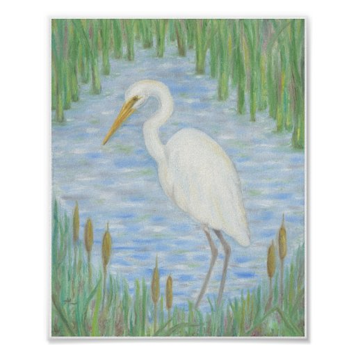 White Egret in Cattail Marsh art print