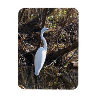 White Egret Rectangular Photo Magnet