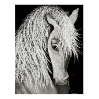White Elegance Postcard