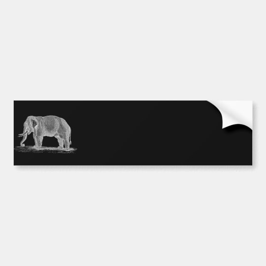 White Elephant Vintage 1800s Illustration Bumper Sticker