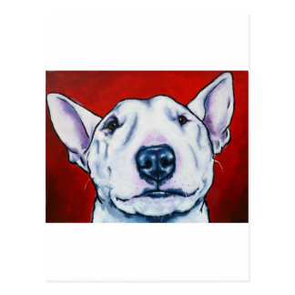 White English Bull Terrier Postcard